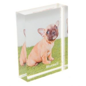 Photo Crystal Pet